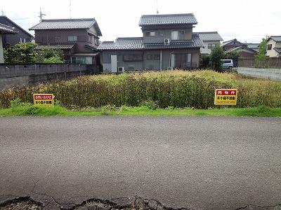 西境松町(分譲地)